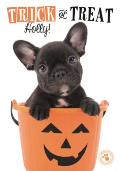 Cute Puppy Trick Or Treat Personalised Halloween Card
