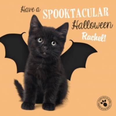 Cute Kitten Personalised Halloween Card