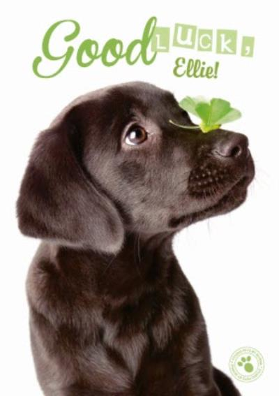 Personalised Good Luck Labrador Card