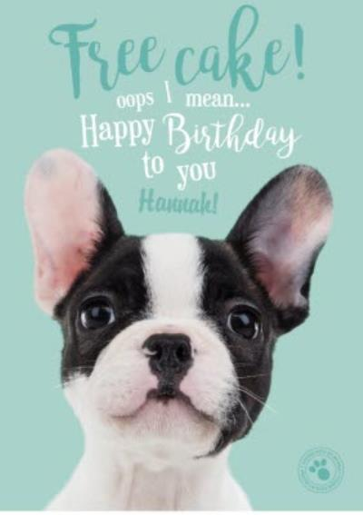 Studio Pets Free Cake Birthday Card