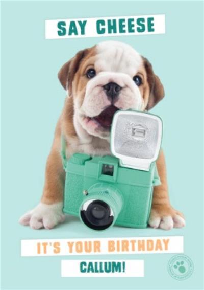 Cute Bulldog  holding vintage camera - Personalised Birthday Card