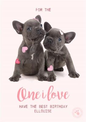 French Bulldog Birthday Cards Set of 2 Cards Happy Birthday