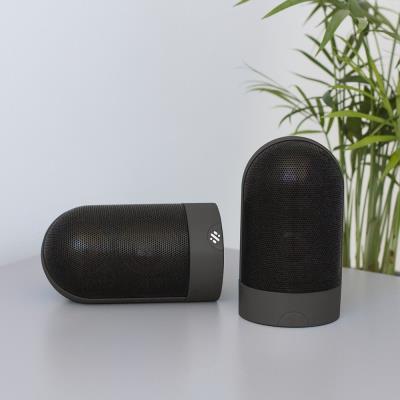 Twin Magnetic Speaker Set