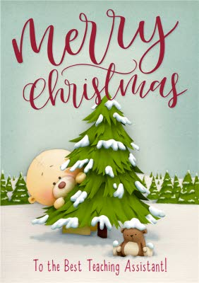 Christmas Cards For Teachers.Teacher Christmas Cards Personalised Teacher Christmas