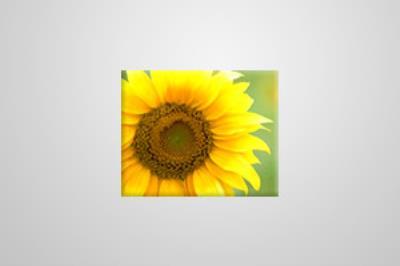 Eco Canvas 51cm x 41cm