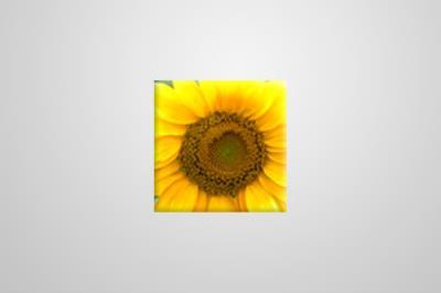 Eco Canvas 41cm x 41cm