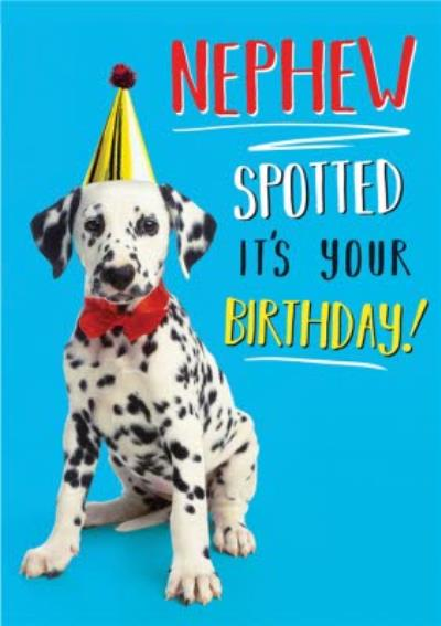 Dog Nephew Spotted It's Your Birthday Card