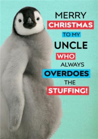 Stuffed Penguin Personalised Christmas Card