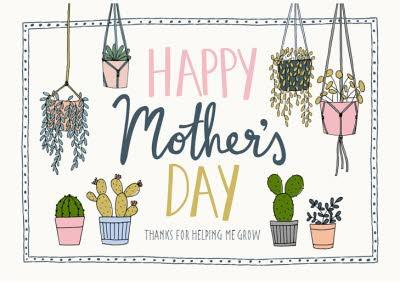 Mother's Day Card - plants - succulents