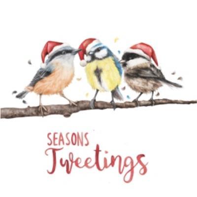 Seasons Tweetings Birds Pun Card