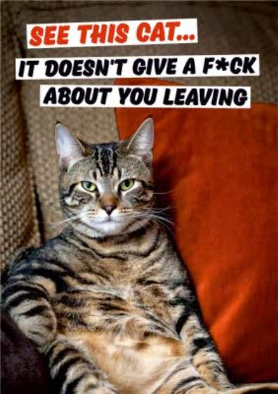 Dean Morris See This Cat Funny Leaving Card