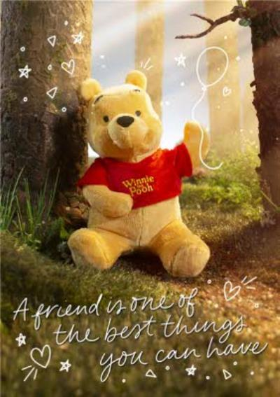 Cute Disney Plush Winne the Pooh Best thing you can Have Card