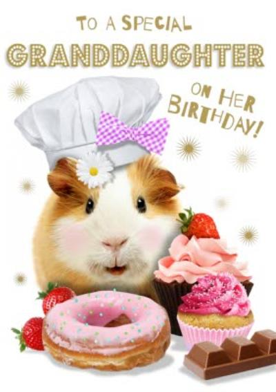 To A Special Granddaughter Birthday Guinea Pig Card