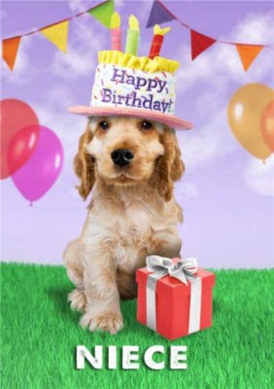 Cute Dog Wearing Birthday Cake Hat Birthday Card