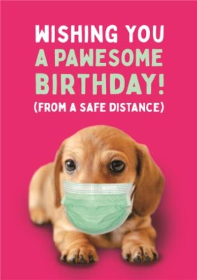 Dog Face Mask Covid From A Safe Distance Wishing You A Pawesome Birthday Card
