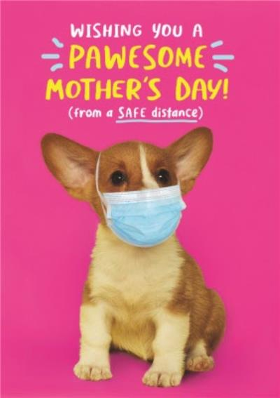 Wishing You A Pawsome Mother's Day From A Safe Distance Funny Card