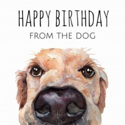 Illustrated Watercolour Labrador Happy Birthday From the Dog Birthday Card
