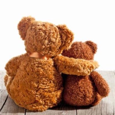Photographic Hugging Teddy Bears Card