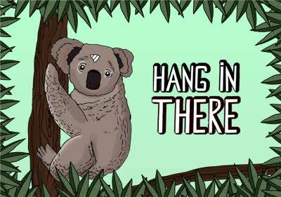 Illustration Hang In There Koala Card