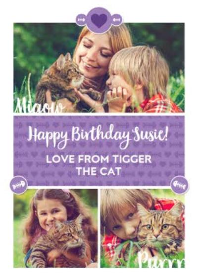 Happy Birthday From The Cat Photo Upload Card