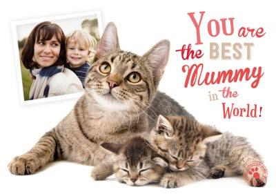 Mother's Day Card - Best Mummy in the World - Cat with Kittens - Photo Upload Card
