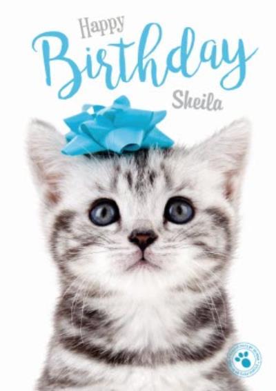 Little Kitten Personalised Birthday Card