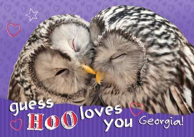 Guess Hoo Loves You Owls Personalised Happy Valentine's Day Card