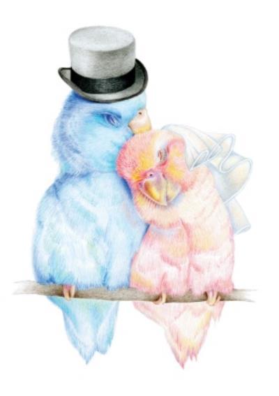 Hand Drawn Love Birds Wedding Card