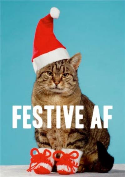 Cat With Santa Hat Festive Funny Christmas Card
