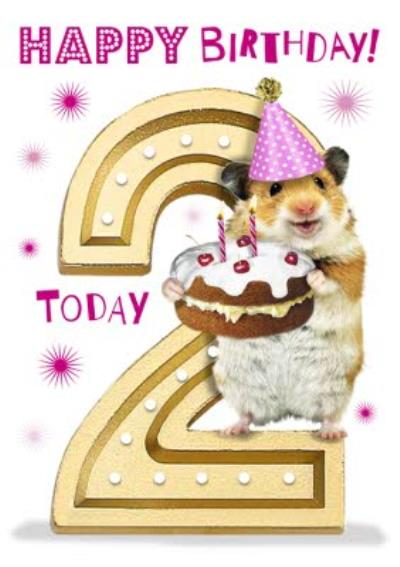 Cute Hamster With Cake 2nd Birthday Card