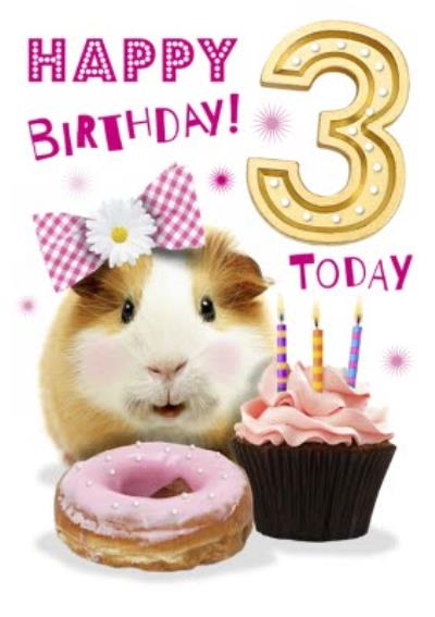 Cute Guinea Pig With Cupcake 3rd Birthday Card