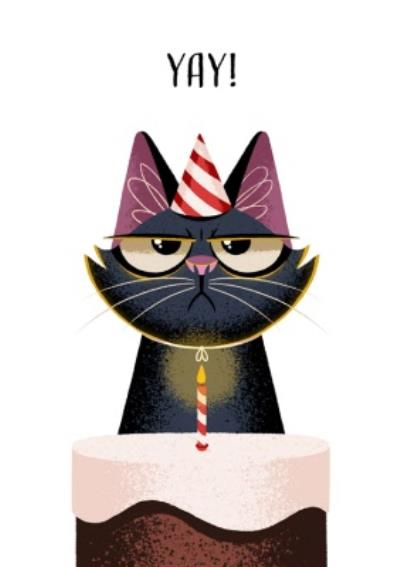 Folio Cat Yay Cake Birthday Card