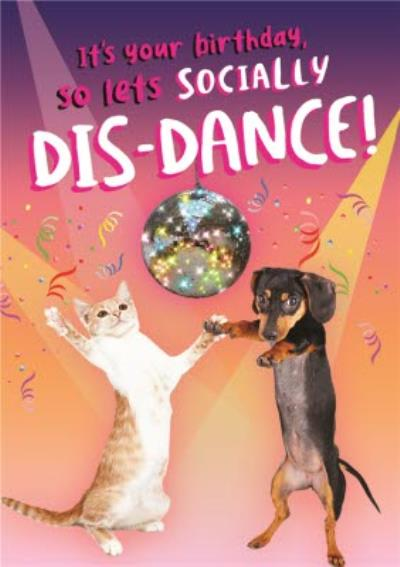 Cat And Dog Disco Covid Lets Socially Dis Dance Disco Lockdown Birthday Card