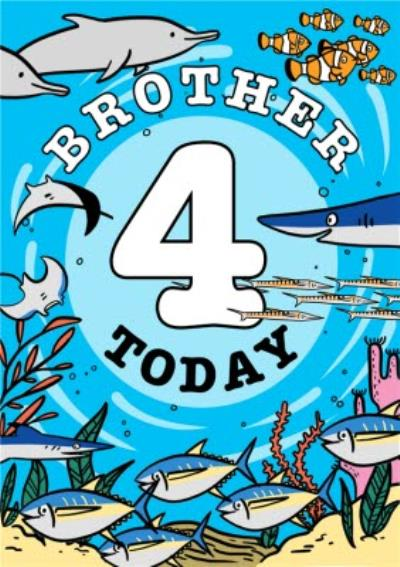 Dolphins Brother 4 Today Birthday Card