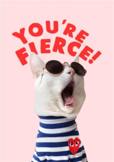 Jolly Awesome You're Fierce Funny Cat Card