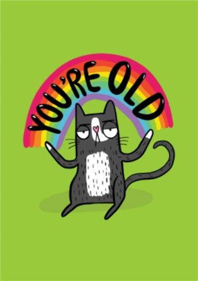 You are Old Funny Rainbow Cat Birthday Card