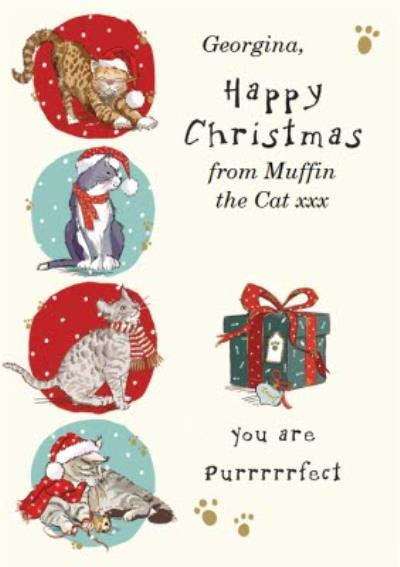 You Are Purrrrfect Kitty Personalised Happy Christmas Card