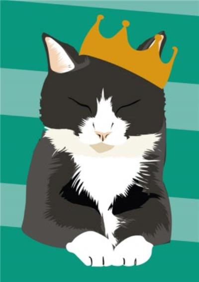 Illustrated Party Hat Black And White Cat Card