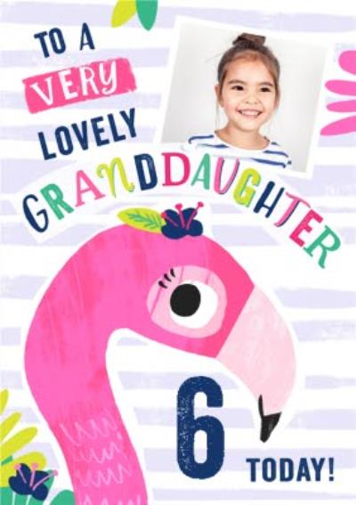 6 Today Flamingo Photo Upload Birthday Card For Granddaughter