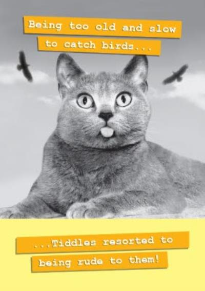 The Cat Being Too Old And Slow Funny Birthday Card