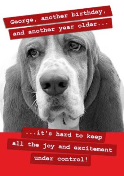 Another Birthday, Another Year Older. Funny Dog Birthday Card