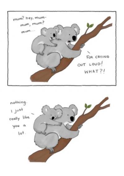 Modern Cute Illustration Koalas Mum I Really Like You A Lot Card