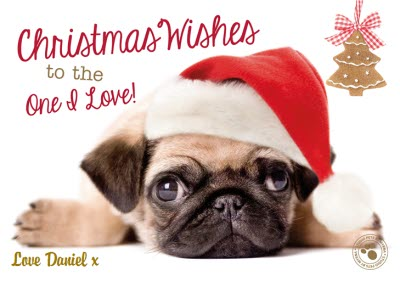 8a3f24c7e02 Little Pug With Santa Hat Personalised Merry Christmas Card