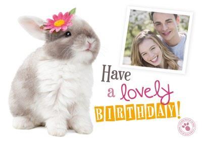 Adorable Bunny Happy Birthday Photo Upload Card
