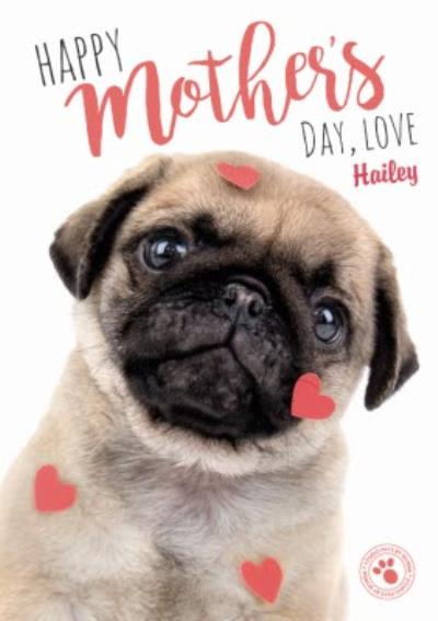 Personalised Happy Mothers Day Pug Card