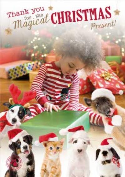 Cute Pets In Santa Hats Photo Upload Christmas Card