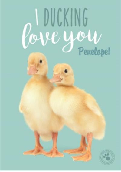 Studio Pets Ducking Love You Personalised Text Card