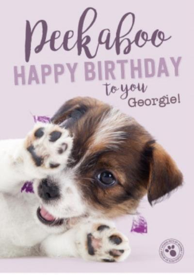Studio Pets Peekaboo Personalised Text Birthday Card