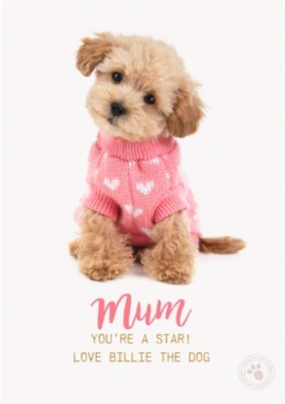 Puppy Mum You're A Star Cute Mother's Day Card