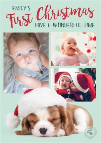Studio Pets Frist Time Christmas Photo Upload Card